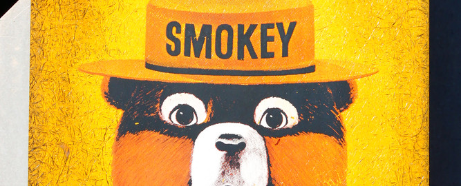 Smokey bear-prevent forest fires image